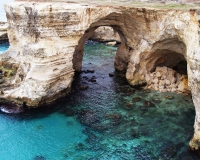 19-Grotte-marine-a-Sant'Andrea